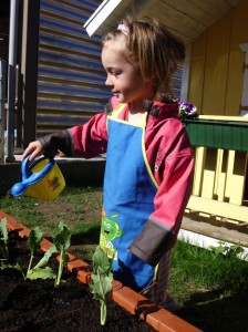 Hochbeet giessen im Montessori Kindergarten Frasdorf